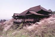 Séjour linguistique Kyoto, Cours japonais à Kyoto