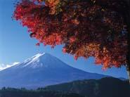 Séjour linguistique Japon, Cours Japon